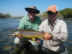 Shay's large Brown and Nicko in San Martin los Andes