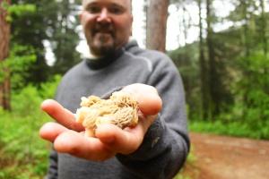 boise mushroom 001