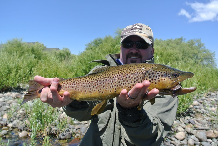 A nice brown caught on a striping streamer.