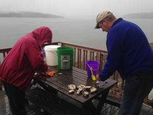 Jan and Mike begin shucking oysters.